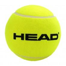 BAL HEAD GEMIDDELD