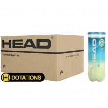 HEAD PRO BLUE TENNISBAL (KARTON 24x TUBE 3 BALLEN)