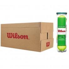 WILSON STARTER PLAY TENNISBALLEN (18 TUBES VAN 4 BALLEN)