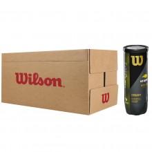 WILSON US OPEN ( doos 24x3 ballen)